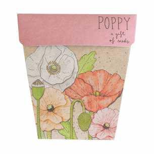 Poppy<br>