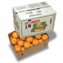 Oranges 2nds/Juicing Bulk Box