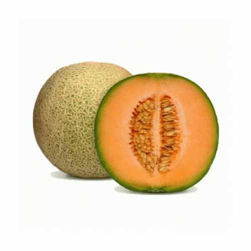 Rockmelon Smaller Fruit