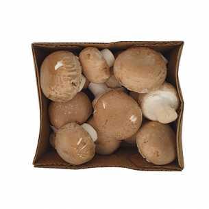 Mushrooms Pre-Pack