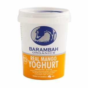 Real Mango Yoghurt